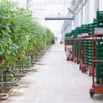 Nautilus Organic Bioverbeek 28